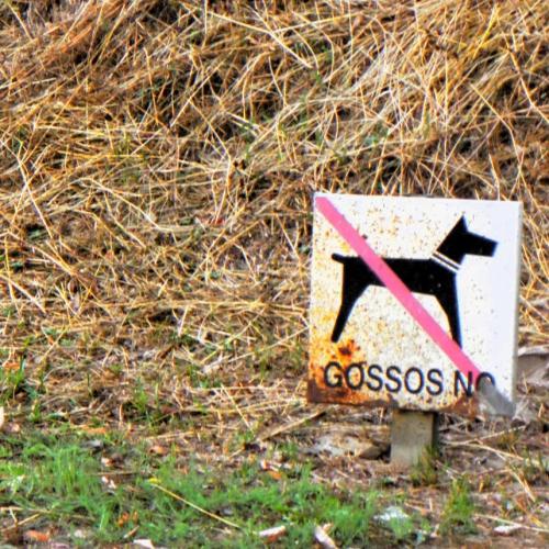 Katalonia: Gossos No