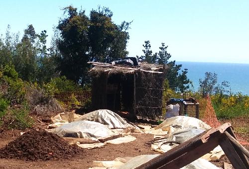 Przepis na kompost z widokiem na ocean